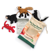 Great Smoky Mtn set (lizard,bear,skunk,fox)