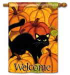 Pumpkin Patch Cat DS